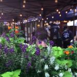 Outdoor Dining UWS Video