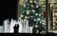 The Lincoln Center Tree on the Upper West Side