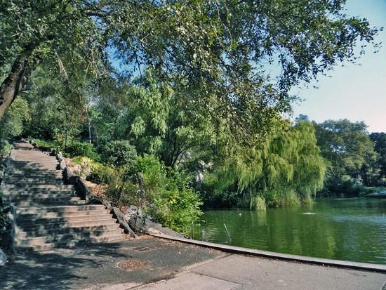 Morningside Park Scenery