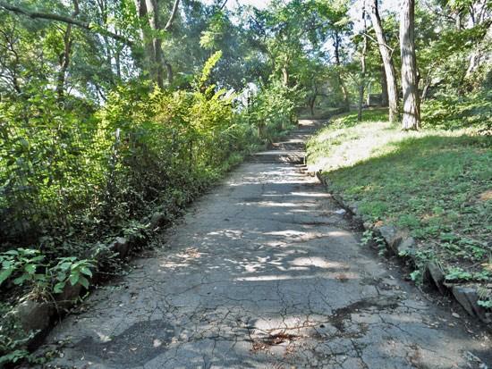 Morningside Park Walking Trail