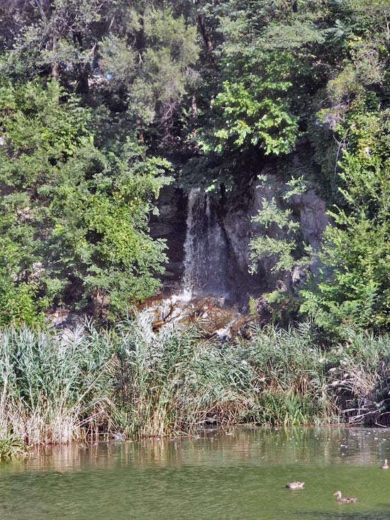 Morningside Park Waterfall